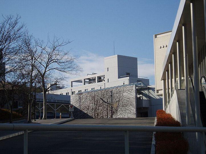 席卷全球的日本艺术类院校